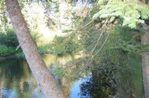 River Property – Ken Carlson Realty