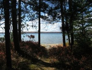 115 Forest Trail Higgins Lake, MI 48627 + Adjoining Property